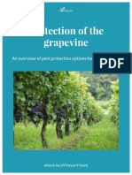 Protection_of_the_grapevine_ebook