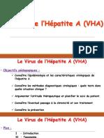 I - 2 - Le Virus de l'Hépatite A (VHA).