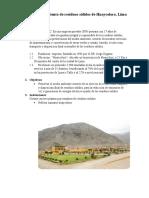 393819588-Planta-de-Tratamiento-de-Residuos-Solidos-de-Huaycoloro.docx