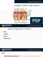 Sistemategumentar.pdf