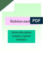 metab_anaerob2Plen.19a