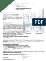 CARTAS MERCATORIANAS-1.pdf