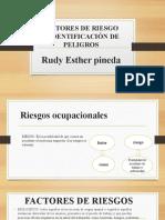 cartilla N 2 Factores de riesgo.pptx
