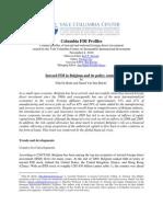 De relatie tussen buitenlandse investeringen en de Notionele Intrestaftrek