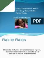 2.Flujo de Fluidos, Lucero Huerta Macías