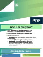 Ecosystem_1
