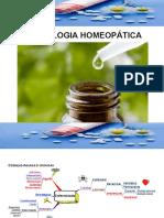 12 - Semiologia.ppt