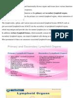 lymphoid organ-converted