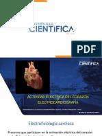 2. ACTIVIDAD ELECTRICA DEL CORAZON Y ELECTROCARDIOGRAFIA