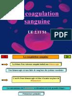 92242769-Coagulation-Sanguine-1.pdf