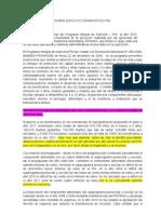 RESUMEN EJECUTIVO DIAGNOSTICO PIN-1