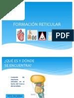 Clase de Formacion Reticular