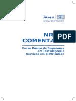 NR 10 FIRJAN.pdf