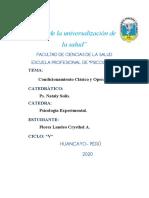 CONDICIONAMIENTO BOTITAS (2) ultimo.docx