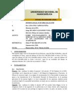 OPINION LEGAL Nº 027-2016-OAL-R-UNH SOBRE MAESTRIA EN DERECHO EN UN AÑO 2016.doc