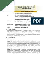 OPINION LEGAL Nº 0232-2016-OAL-R-UNH SOBRE DIRECTIVA DE CAJA CHICA UNH 2016