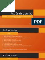 Acción de libertad