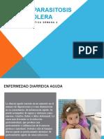 Diarrea, parasitosis y cólera 201902