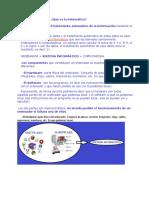 infomartica.doc