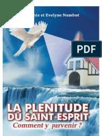 La-plenitude-du-Saint-Esprit-Extrait-PDF