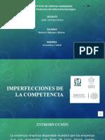 IMPERFECCIONES DE LA COMPETENCIA.pptx