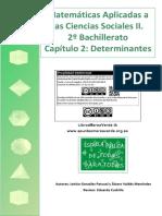 BS2 02 Determinantes_unlocked.pdf