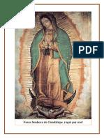 Imagem Nossa Senhora de Guadalupe.docx