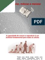 Aula Ciclo,mitose e meiose.pdf