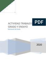 copia  SEMINARIO DE GRADO-ADMINISTRACION IX