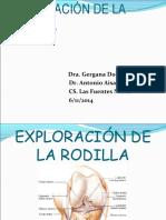 semiología de rodilla