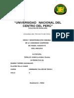 ESQUEMA DEL PROYECTO DE TESIS 2011 (Reparado)