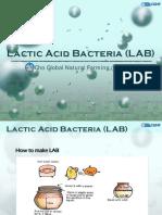 Lactic-Acid-BacteriaLAB.pdf