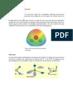 Estructura y propiedades del agua.docx