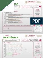 Guia Academica_NEM 200609