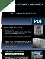 ANALISIS RADIOGRAFICO seminario clínica.pdf