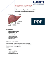 SEMIOLOGIA HEPATICA.docx