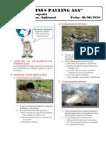 Contaminación Ambiental - Linus