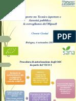 SANA 2019 Pres_Gerini.pdf