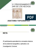 03. Anatomia topografica.ppt