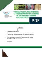 CADENA PRODUCTIVA EN LOS SISTEMAS AGROFORESTALES EN EL PERU.pptx