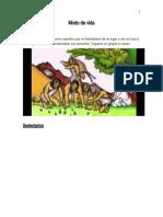 Pueblos Originarios  para  cuaderno.docx