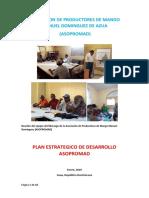PLAN ESTRATEGICO DE ASOPROMAD 03-02-2020.docx