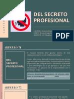 GUTIERREZ REQUENES KATHERINE- DEL SECRETO PROFESIONAL