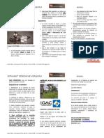 Resumen Ley 1561 de 2012
