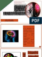 NEUROCIENCIA, diapositivas