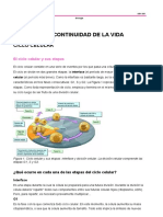 MACHETECiclo celular. Duplicación del ADN