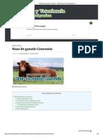 Raza de ganado Limousin