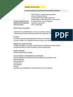 EXÁMEN AUDITORIA I  (1).xlsx