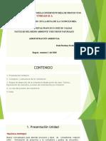 UNIDAD II A 2020.ppt
