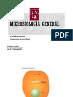 Clase 2. La célula procariota. Mecanismos de movilidad